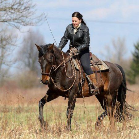 moje-konie-warsztaty