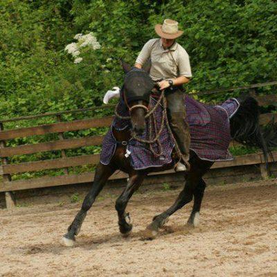 ah-instruktor-moje-konie-876