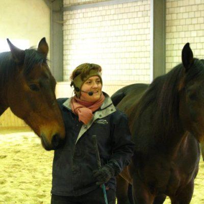 my-horses-3