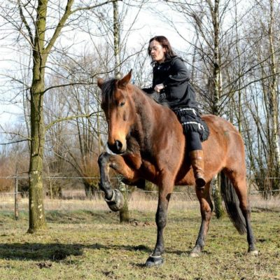 moje-konie-9876