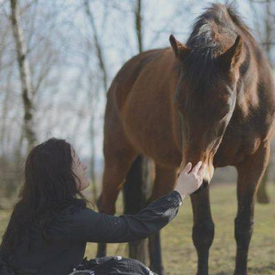moje-konie-i-joga-kraków