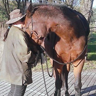 moje-konie-justyna-mitka-9