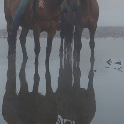 moje-konie-0