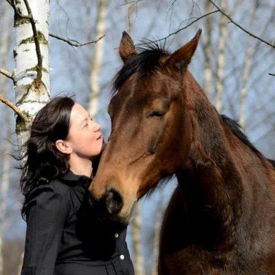 my-horses-poland
